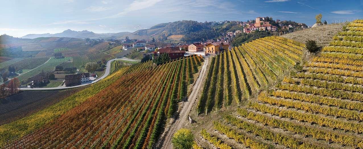 Staden Castellinaldo ligger vackert bland vinmarkerna