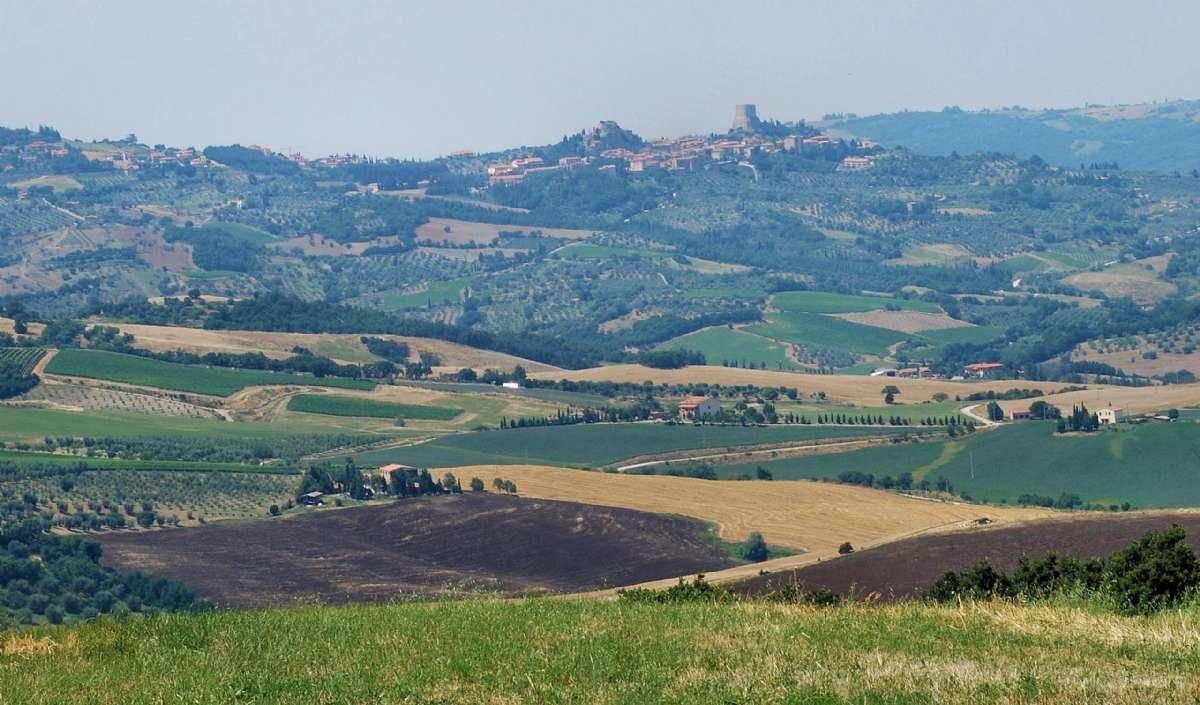 Udsigt mod Castiglione d'Orcia