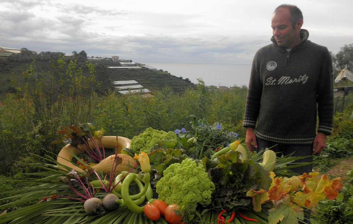 Nino plukker sine grøntsager på Alla Collina sul Mare i Ligurien