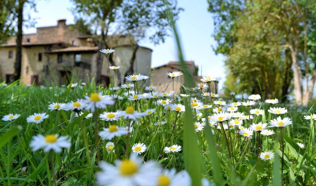 Passez vos vacances dans un agritourisme du nord de l'Italie