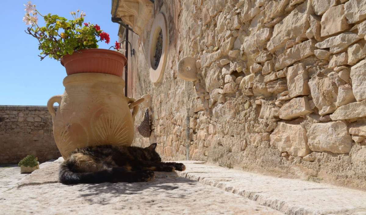 Afslapning og solbadning
