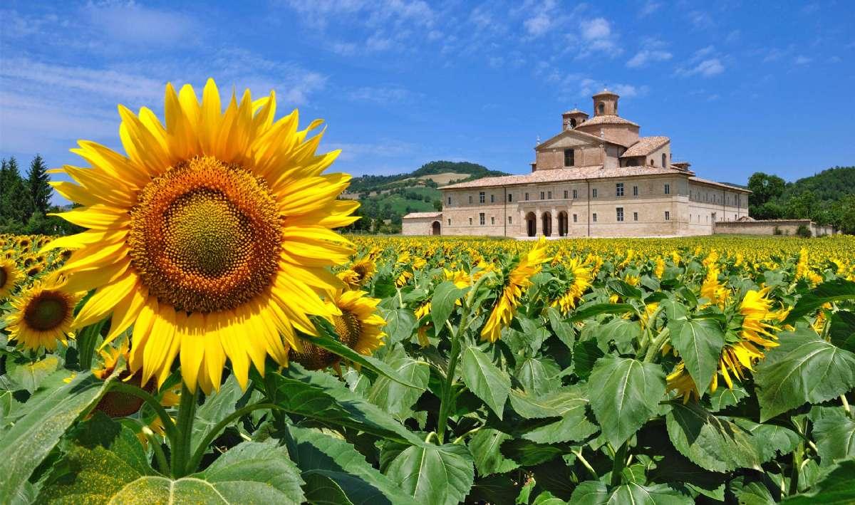 Marche er nabo til Toscana og Umbrien