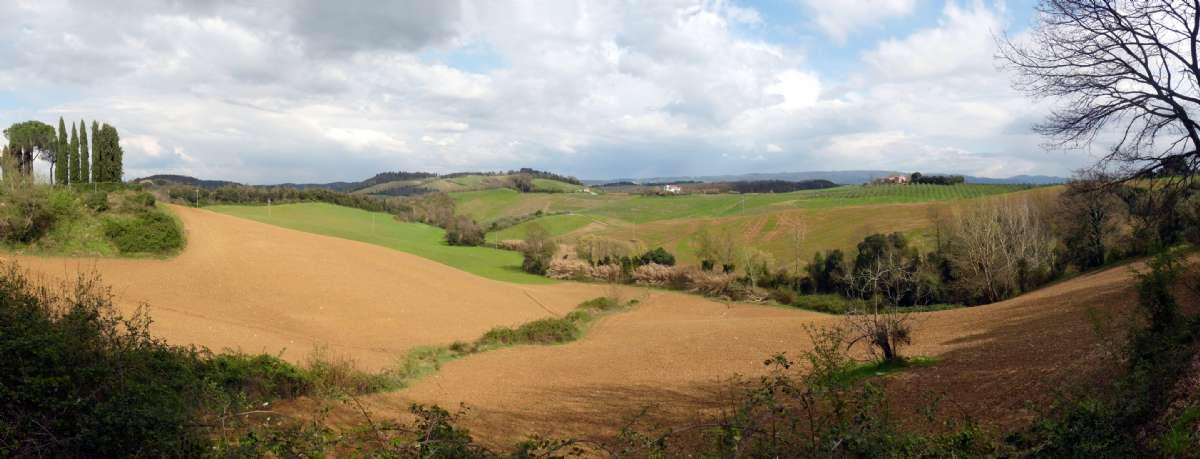 Landskab ved Collesalvetti i Toscana (foto: Wikimedia Commons, Lucarelli)