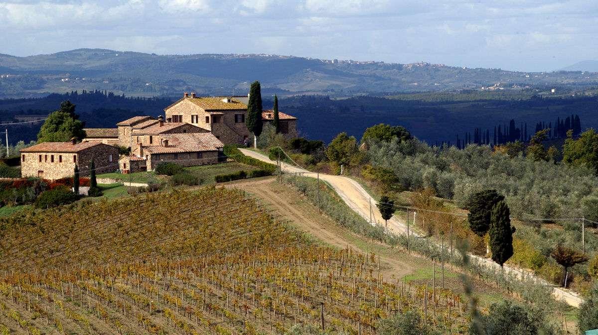 Das Weingut Riserva di Fizzano
