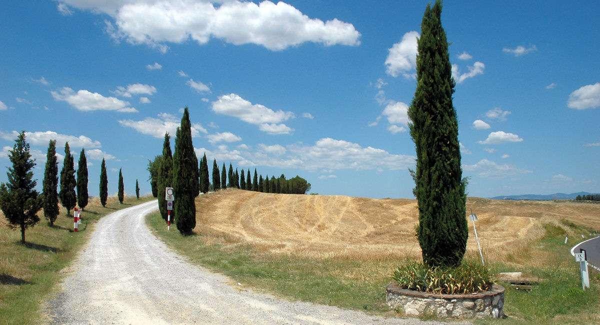 Les collines de Sienne