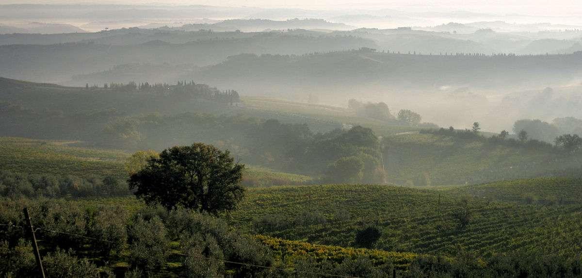 Chianti Weingebiet mitten in der Toskana