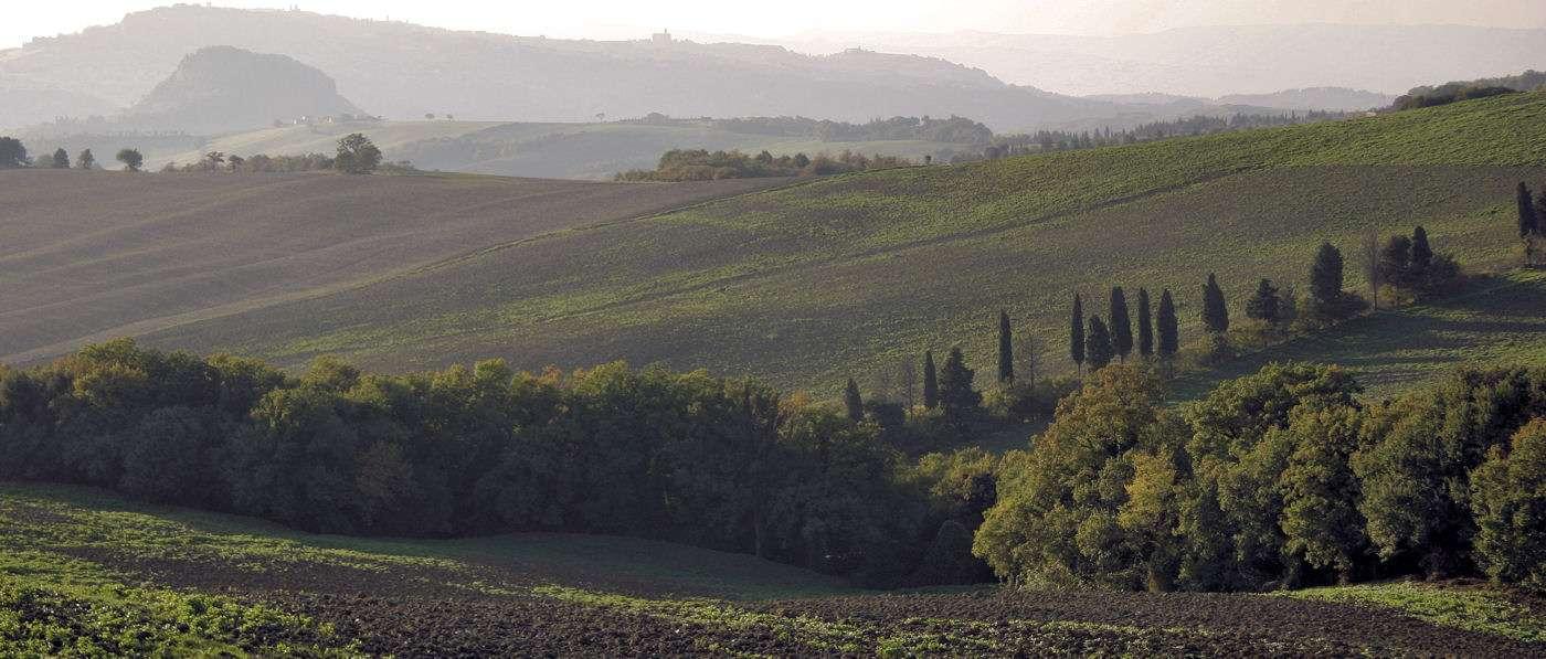Landskapet mot Volterra