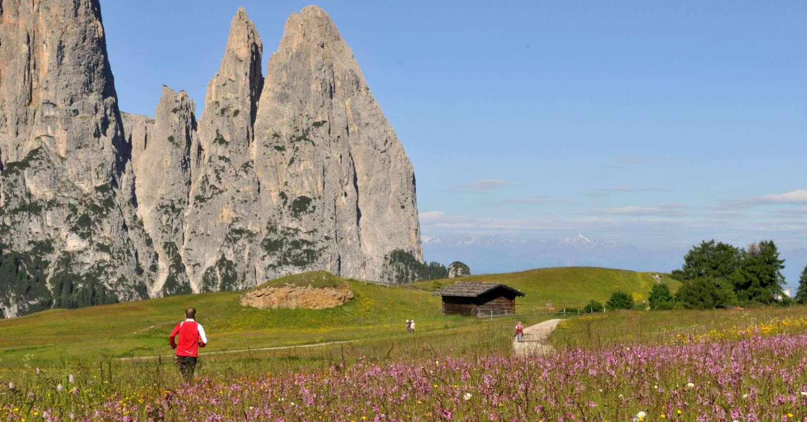 Stejle bjerge og frodige enge i skøn harmoni