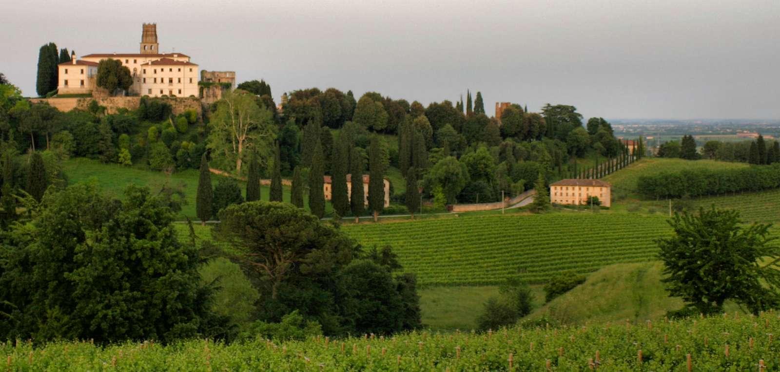 Magnifika vinlandskap bjuder Veneto också på