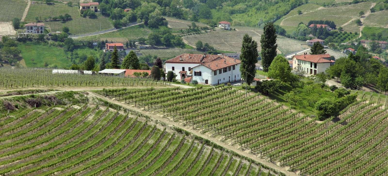 Utsikt och vinmarker