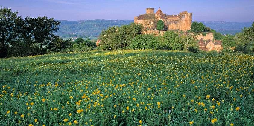 Castelnau borg