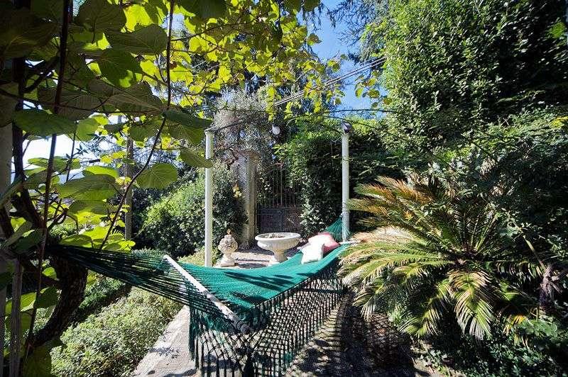 Eksotisk hængekøjehave med vin, figen og palmer