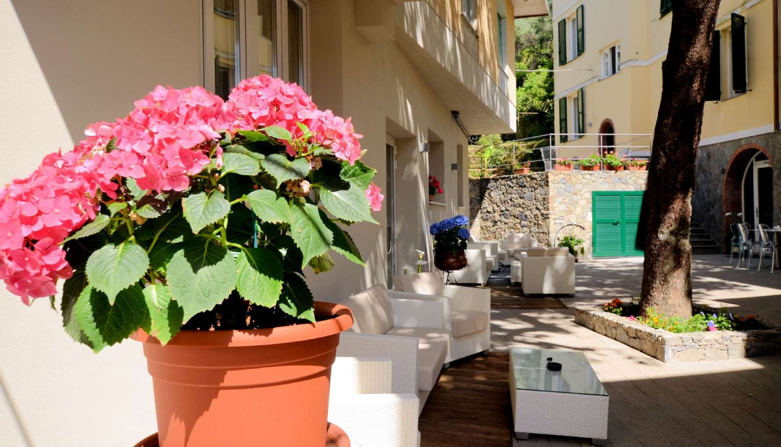 Le confortable patio et son ambiance Lounge