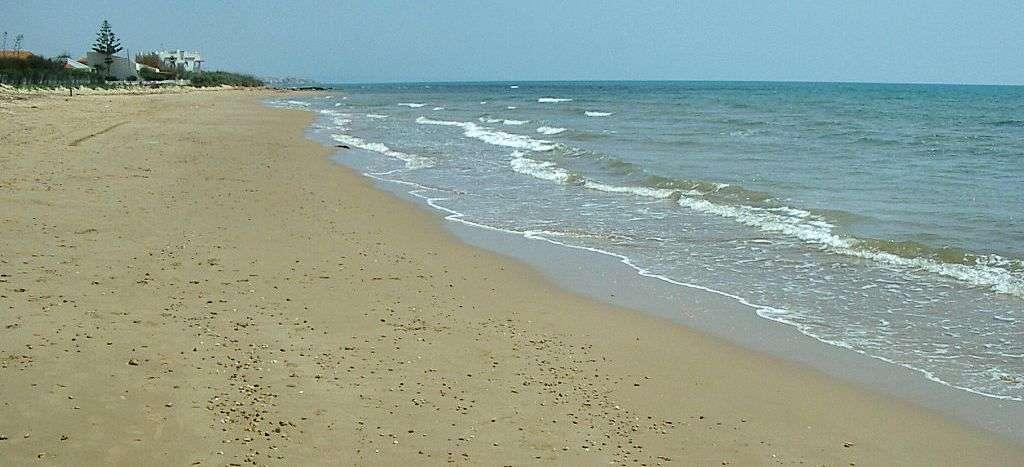 Den flotte sandstrand i Punta Secca