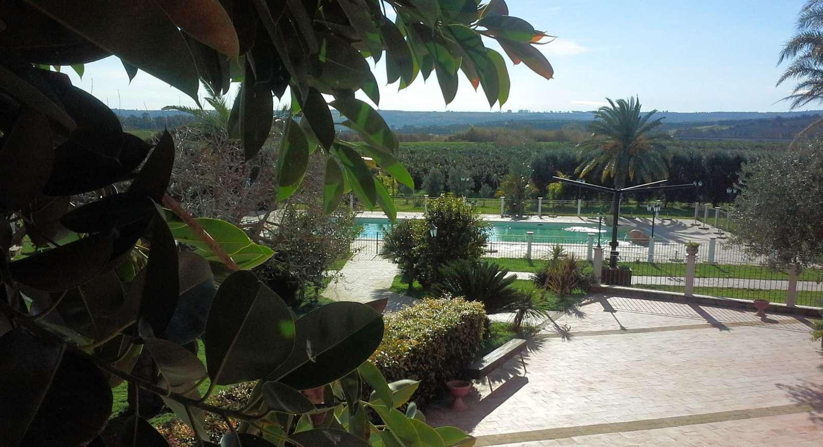 Pool omgivet af den frodige have
