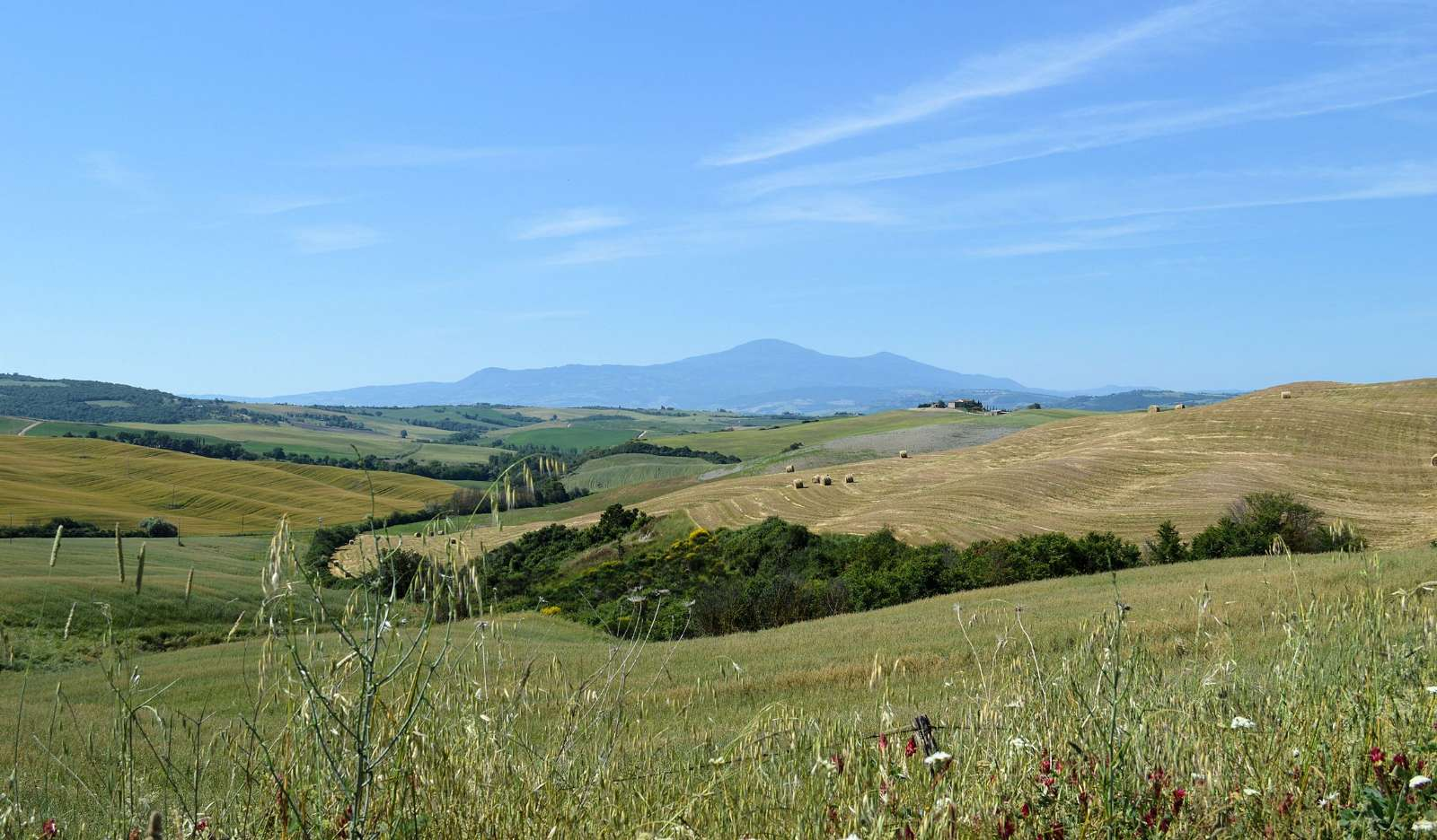 Blick Richtung Monte Amiata