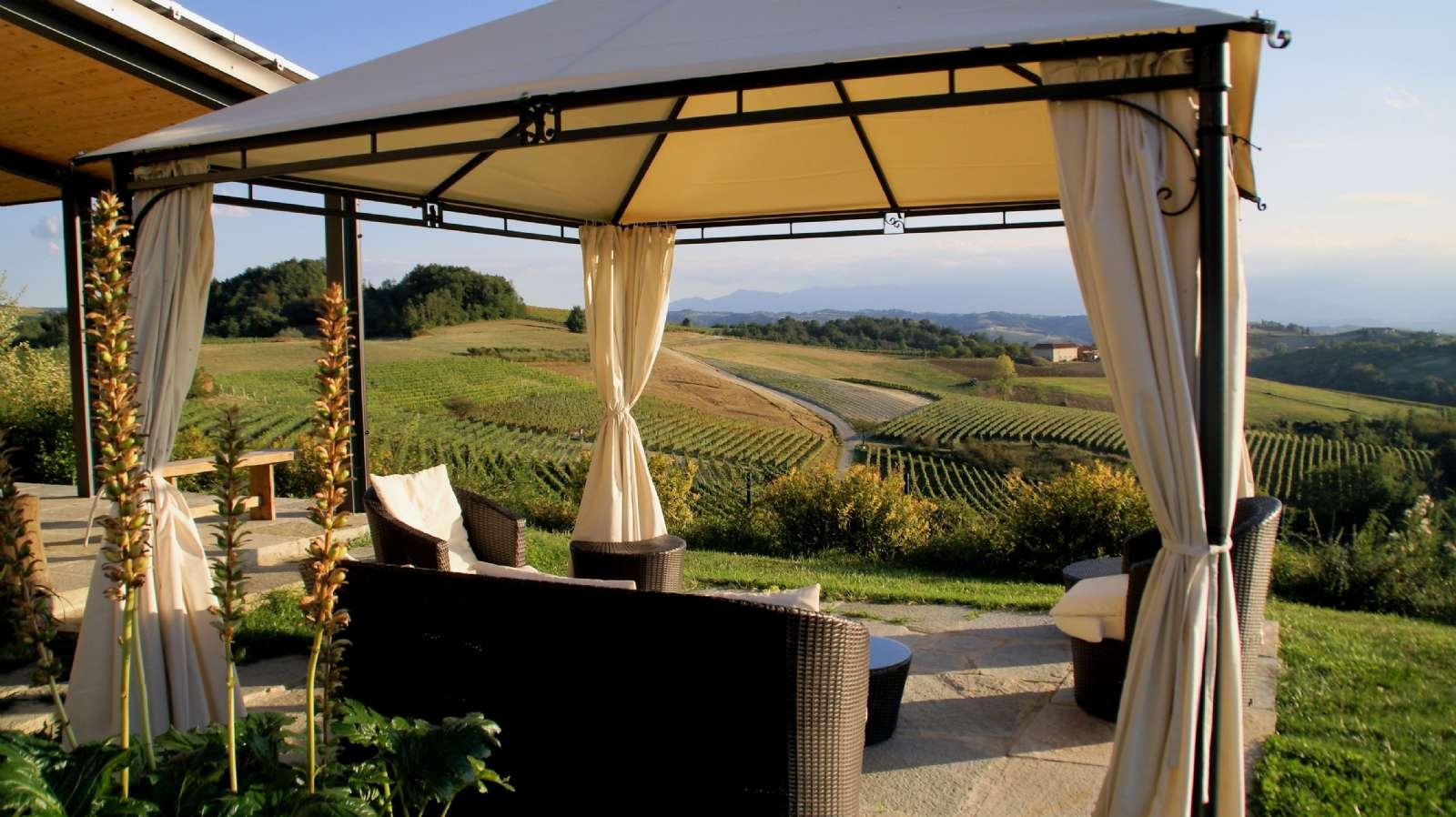 Frit vue ud over vinmarkerne