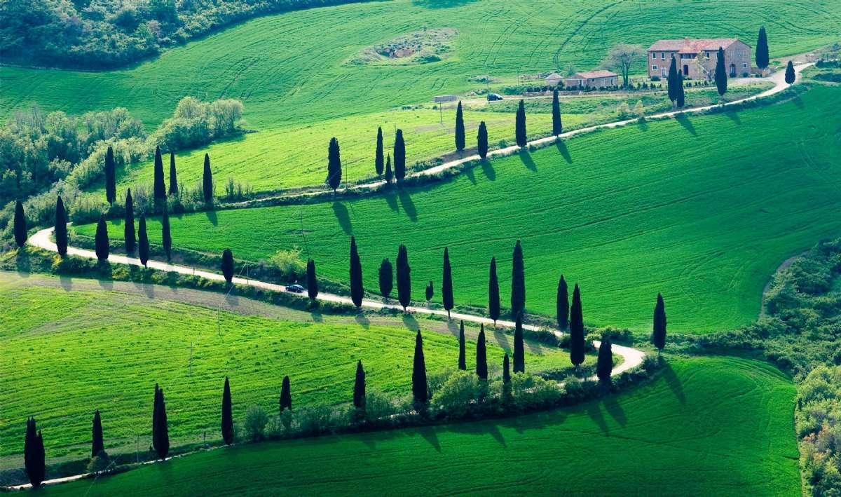 Bakkene ved Siena