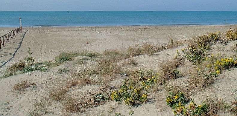 Stranden i Calambrone