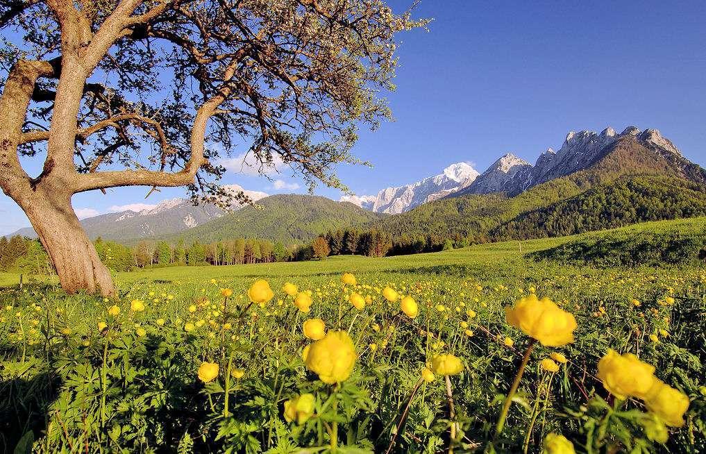 Njut av den vackra naturen på en resa till Friuli i Italien