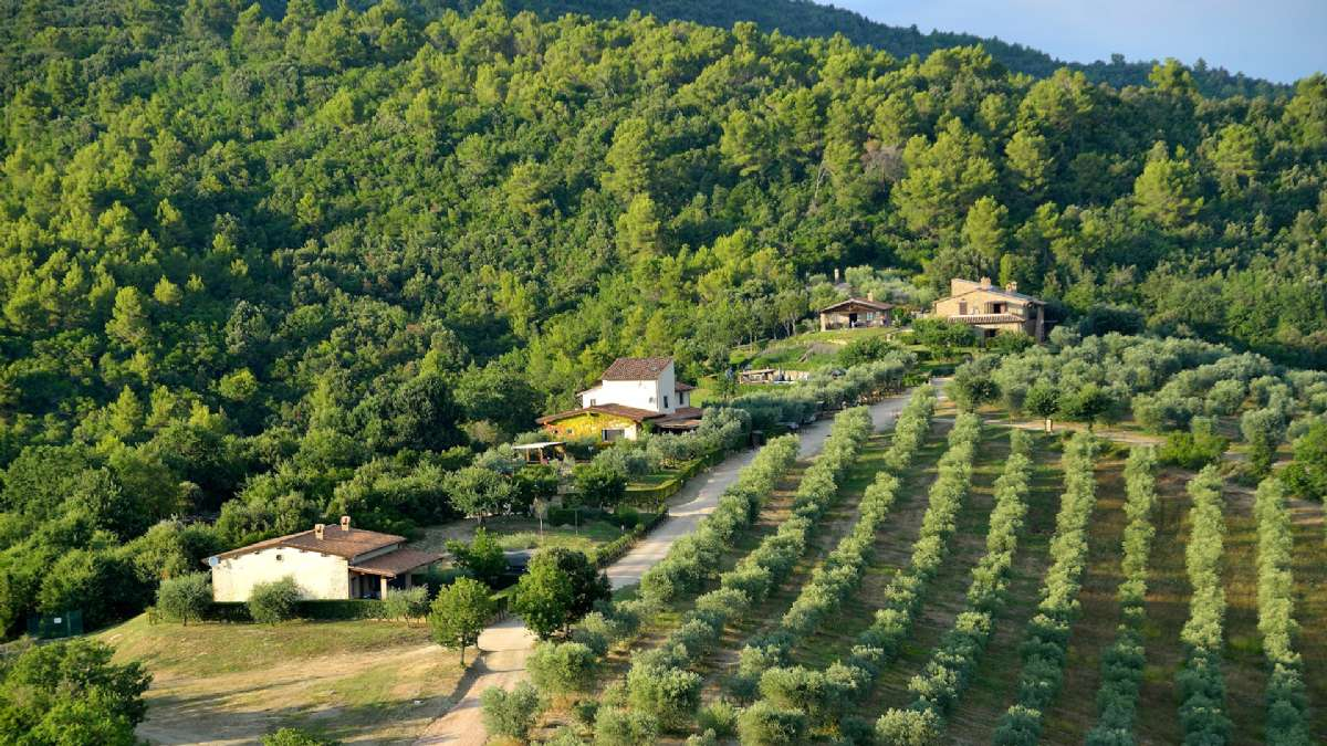 Luftfoto af Forte Sorgnanos skønne omgivelser