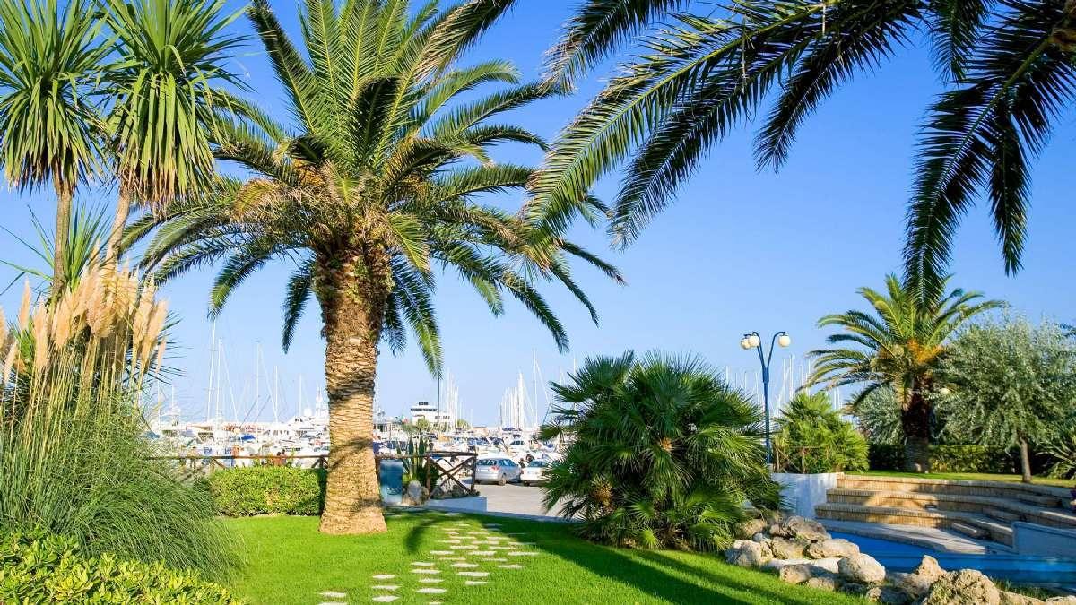 Når man rejser til Pescara får man en duft af eksotiske himmelstrøg - her fra marinaen i byen.