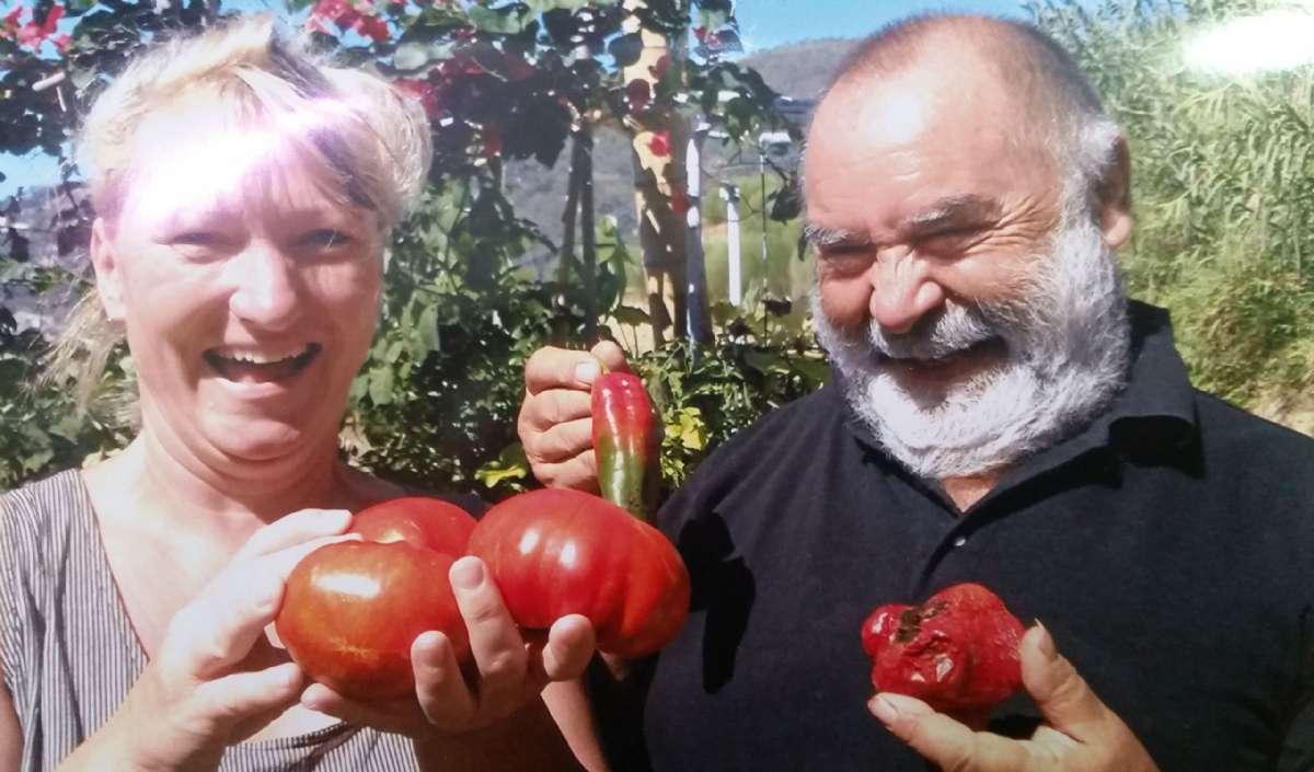 Pier jublar - tillsammans med en gäst - över sin egen tomatproduktion
