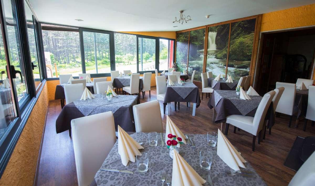 Restaurang med utsikt till skogen