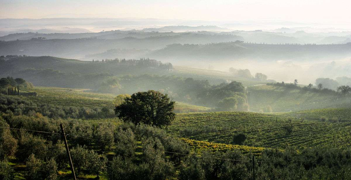 The dawn in Chianti