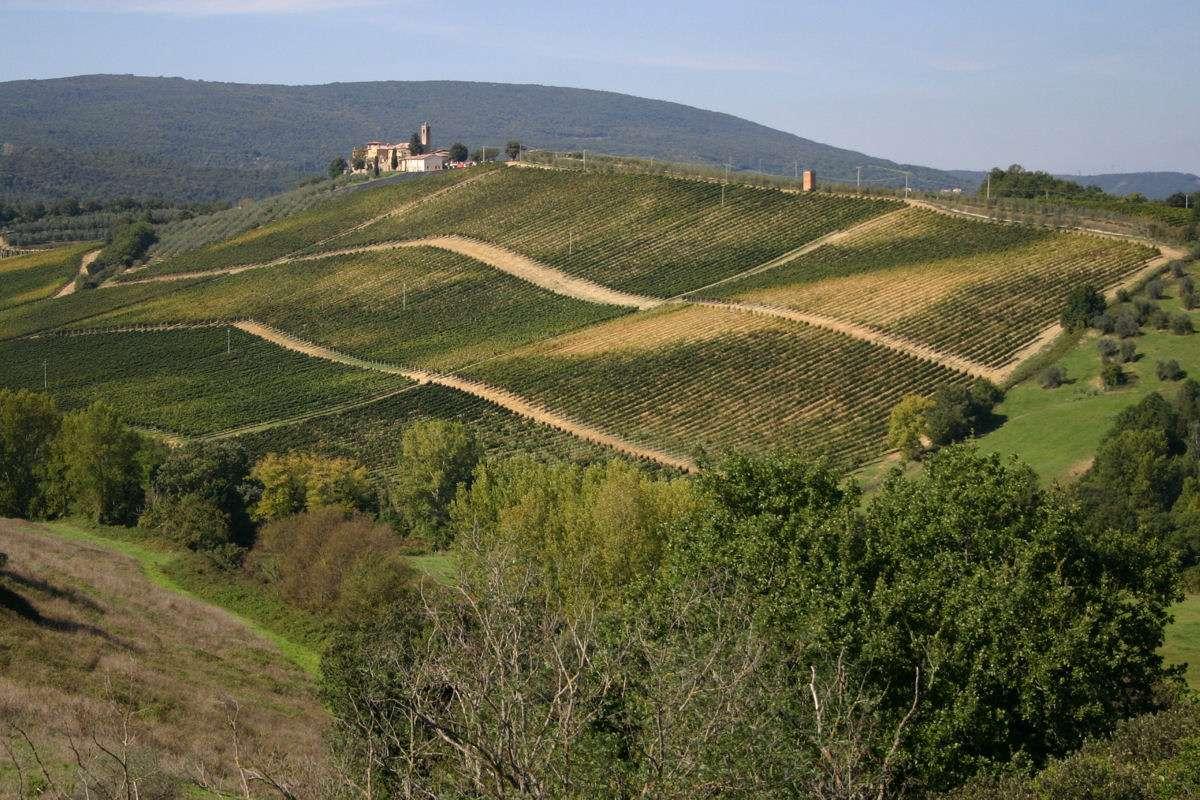 Udsigten fra Torraccia di Chiusi