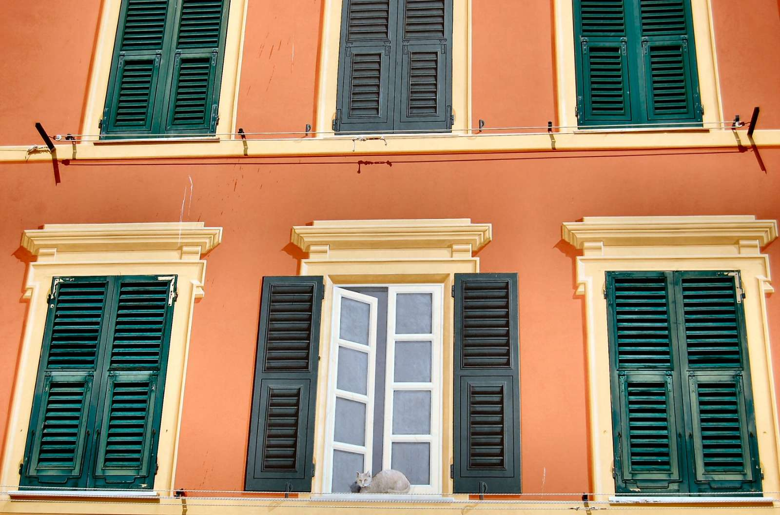 "Ligurian tradition of murals trick often the enemy: see ""cat"" in the window"