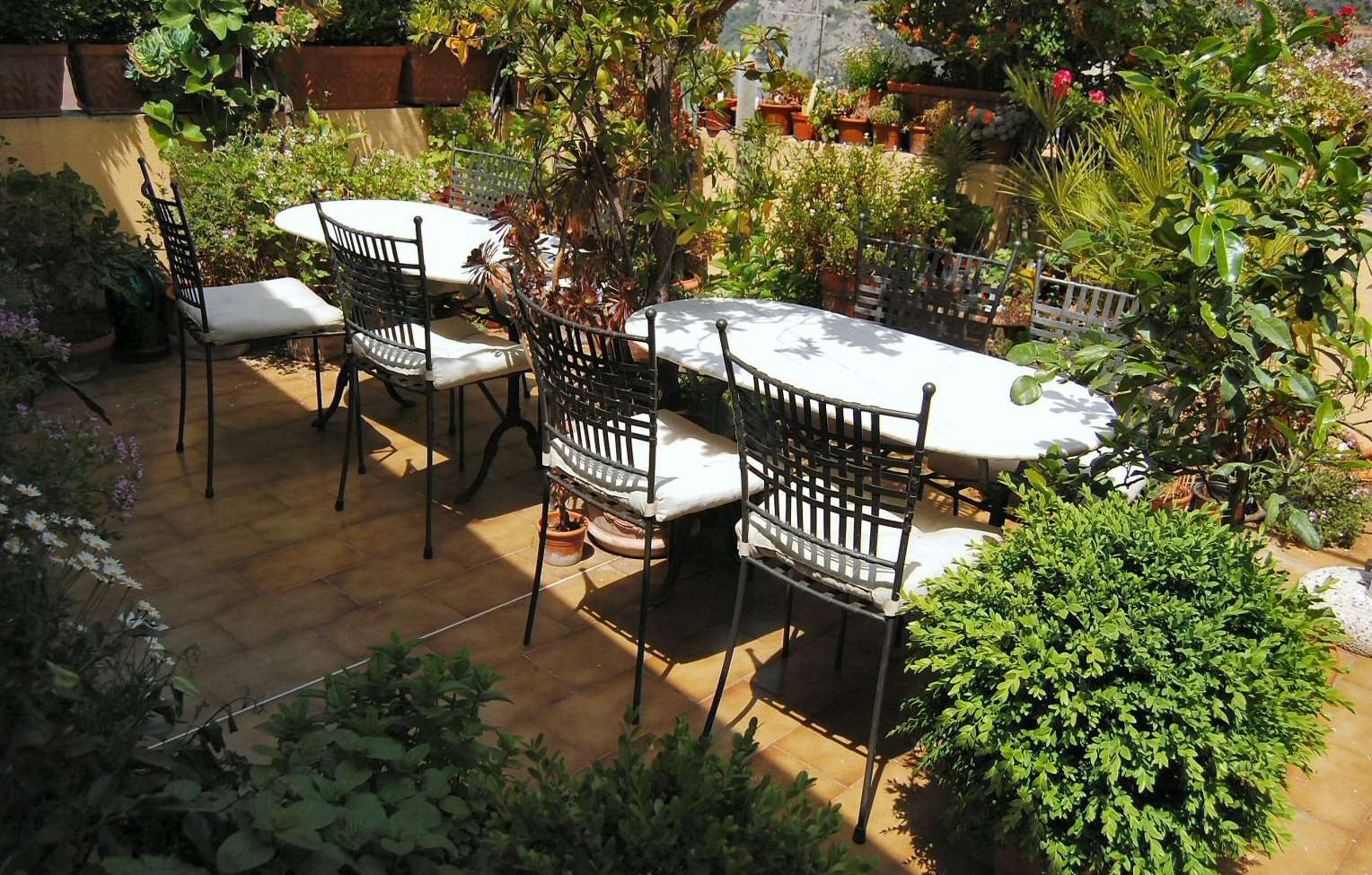 The beautiful terrace is a botanical paradise