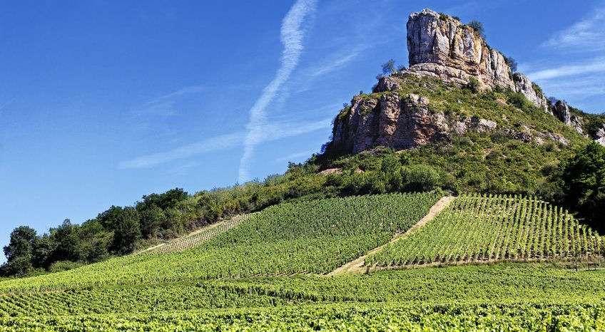 Solutre klippan och vingårdar