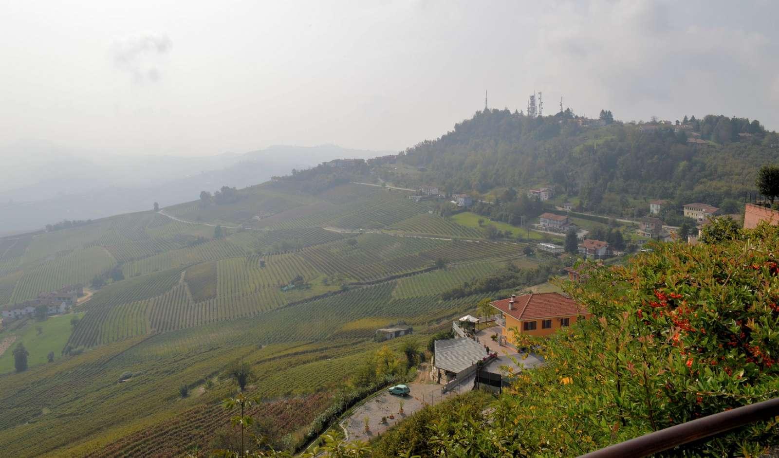 Udsigten over vinmarkerne fra La Morra