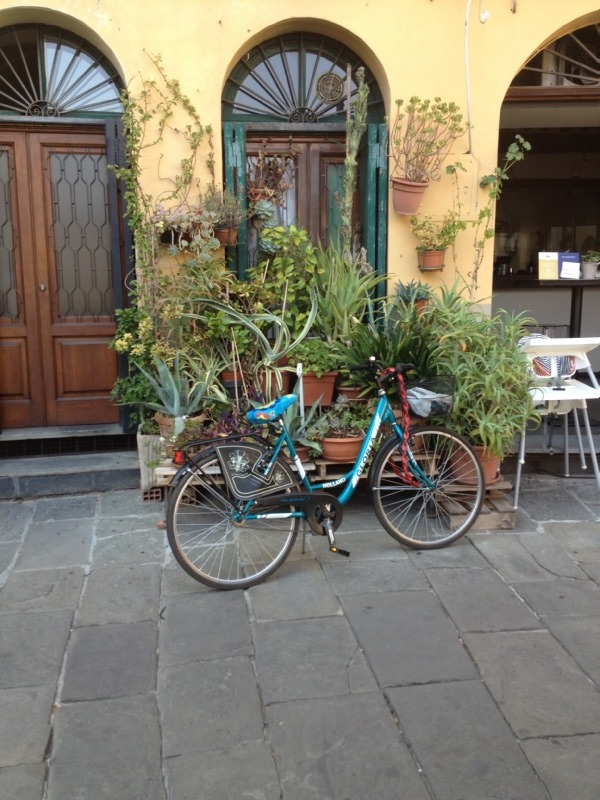 Cykel i Lucca